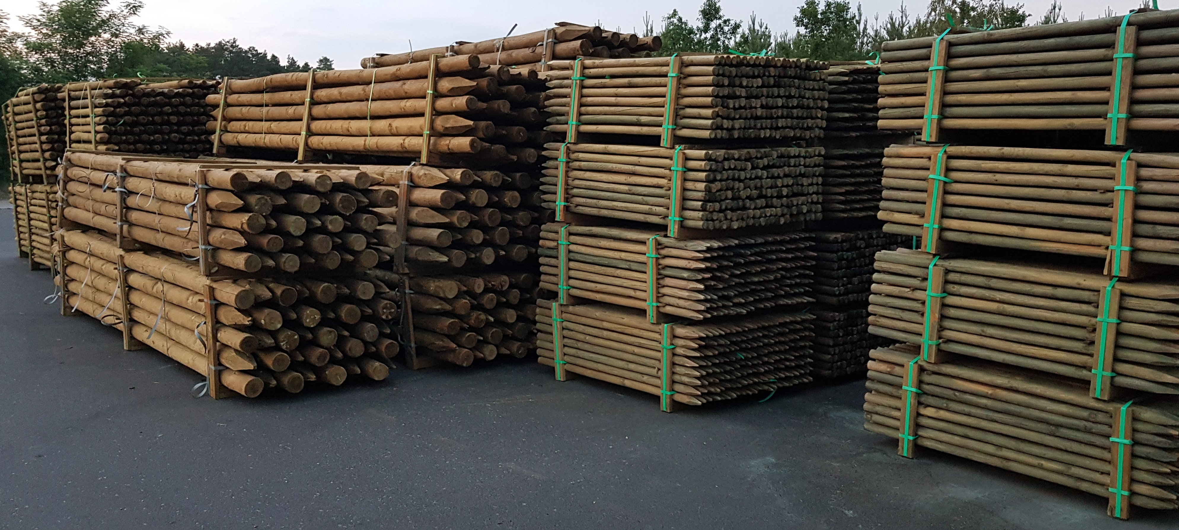Pine Electrical Poles Timber From Poland with vacuum pressure impregnation treatment British Standard
